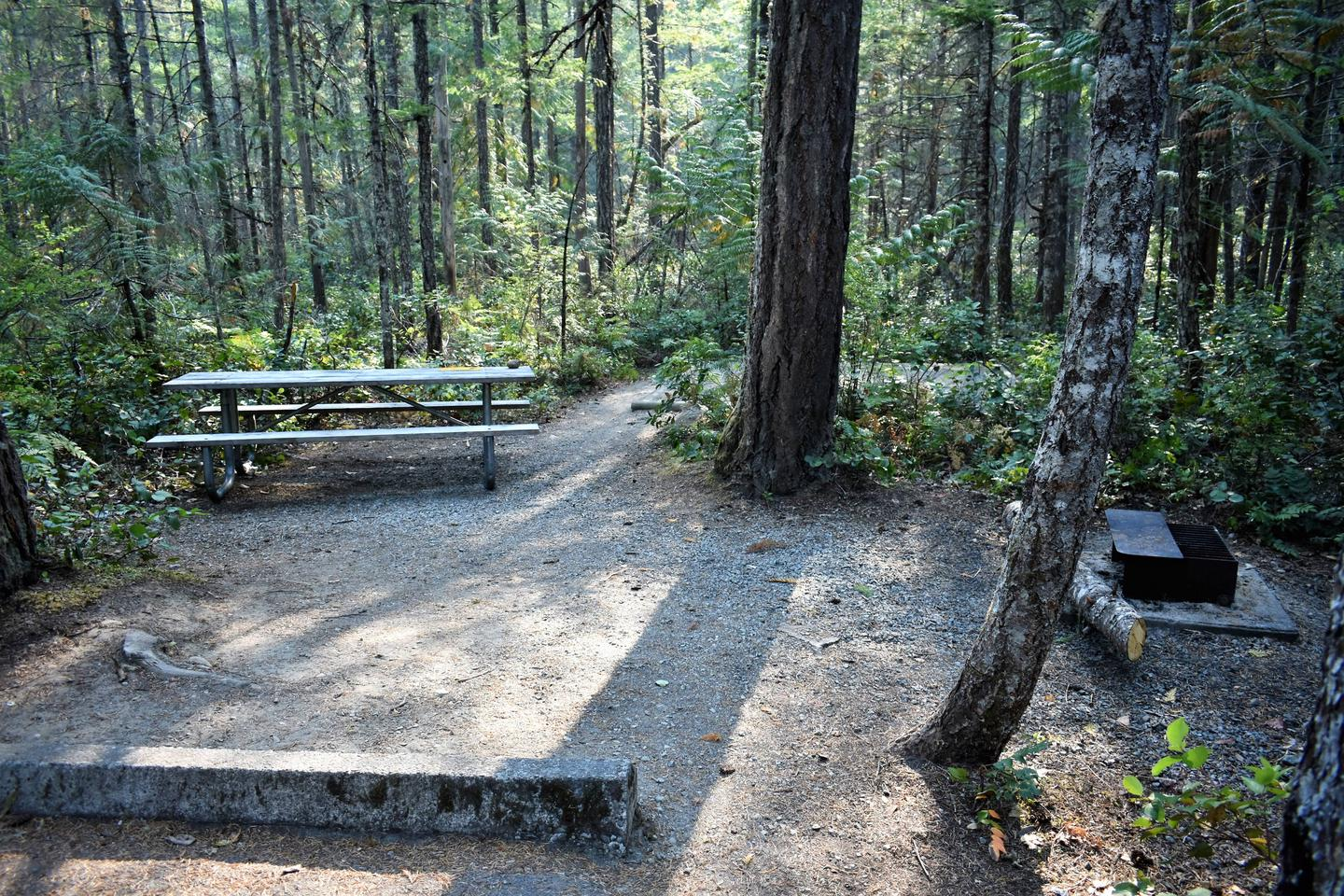 Picnic table and fire ring with tent pad in distanceView of campsite
