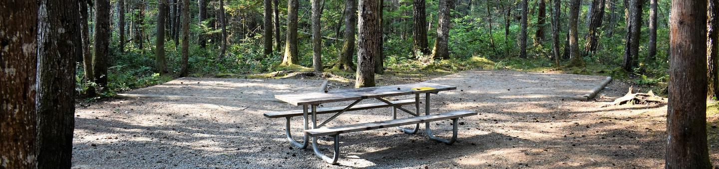 Tent pads and picnic tableView of campsite