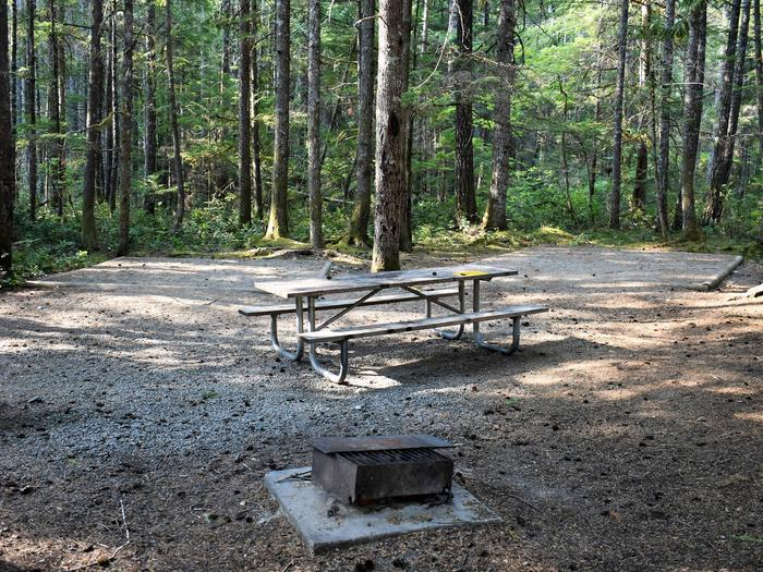 Fire ring, tent pads and picnic tableView of campsite