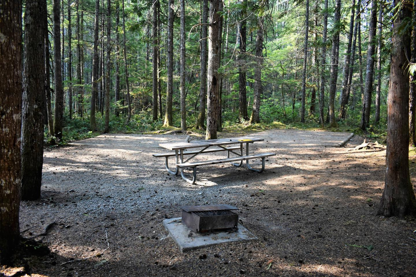 Tent pads, picnic table, and fire ringView of campsite