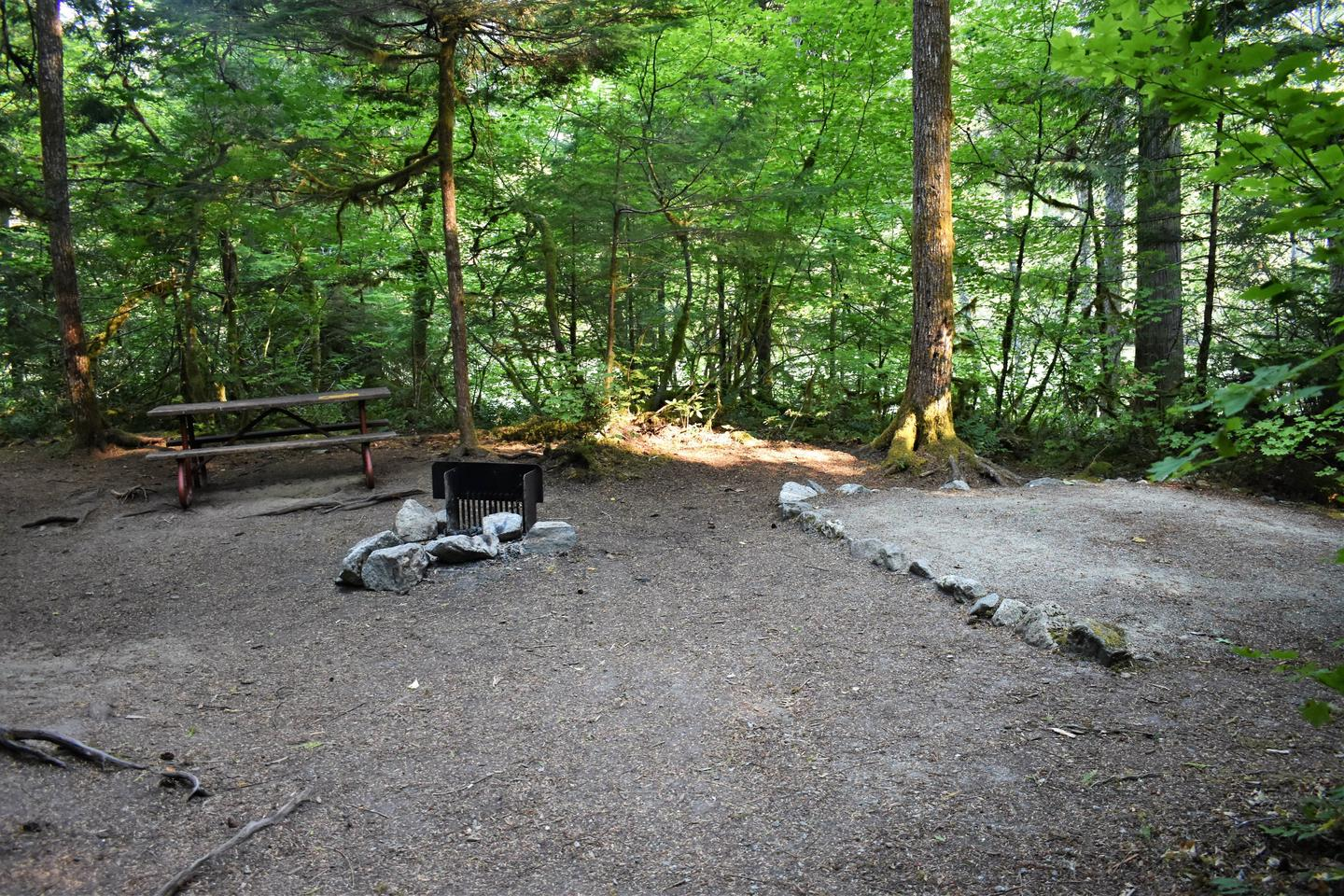 Picnic table, fire ring, and tent padView of campsite