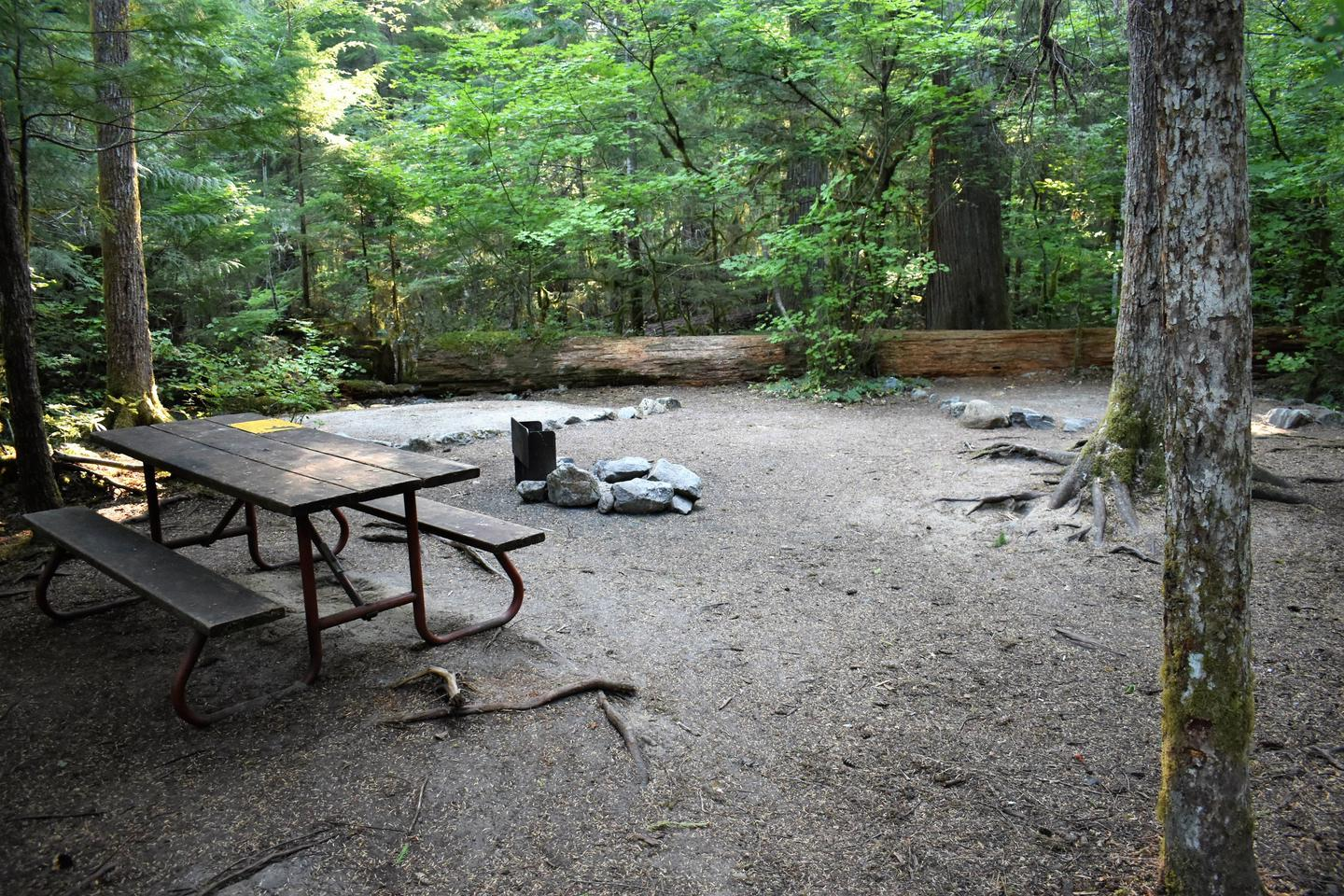 Picnic table, fire ring, and tent padsView of campsite