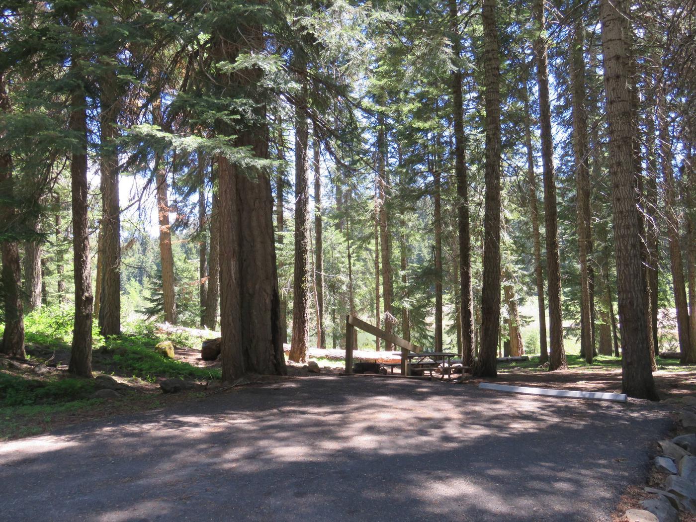 Hyatt Lake Recreation AreaHyatt Campsite