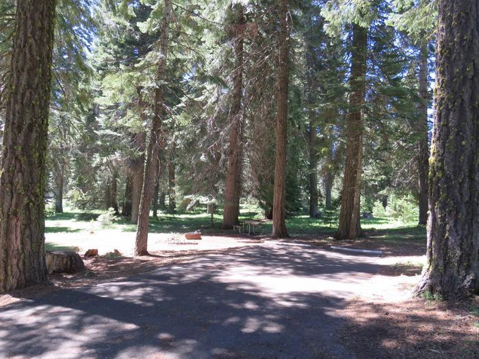 Hyatt Campground Campsite