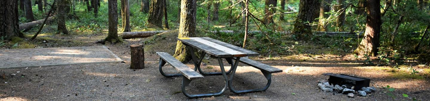 Tent pad, picnic table, and fire ring.View of campsite