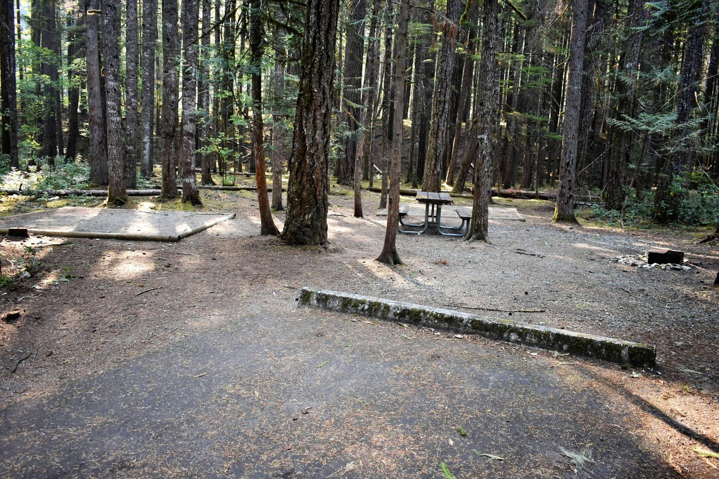 Tent pads, fire rings, and picnic tableView of campsite