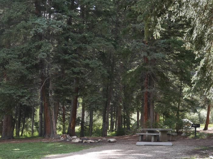 Campsite #20