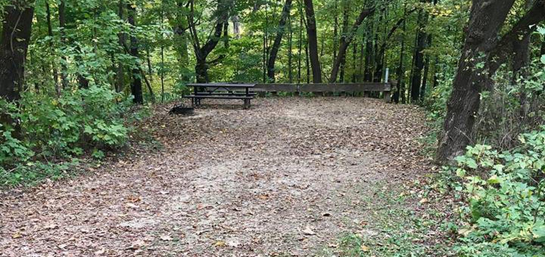 Site 7 ground image