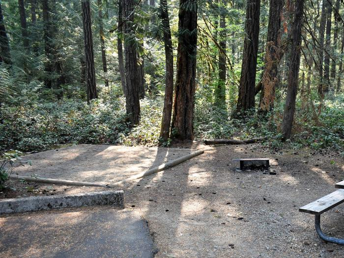 Tent pad, fire ring, and picnic tableView of campsite