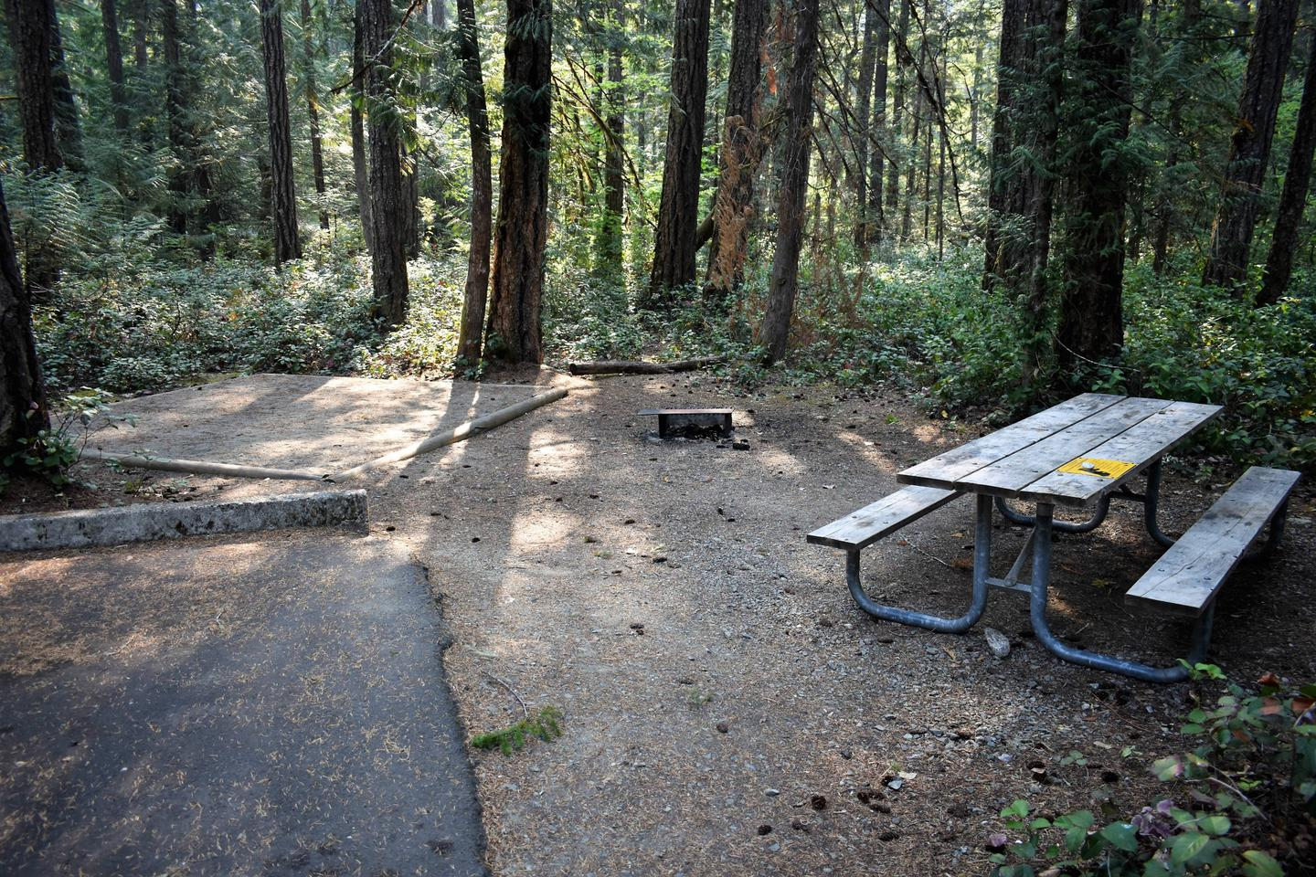 Picnic table, fire ring, and picnic tableView of campsite