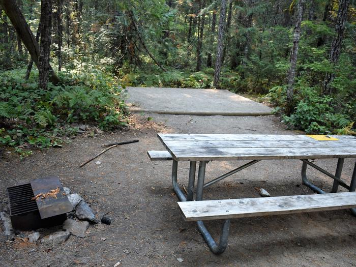 Fire ring, picnic table and tent padView of campsite