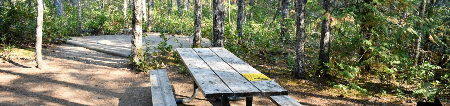 Tent pad and picnic tableView of campsite