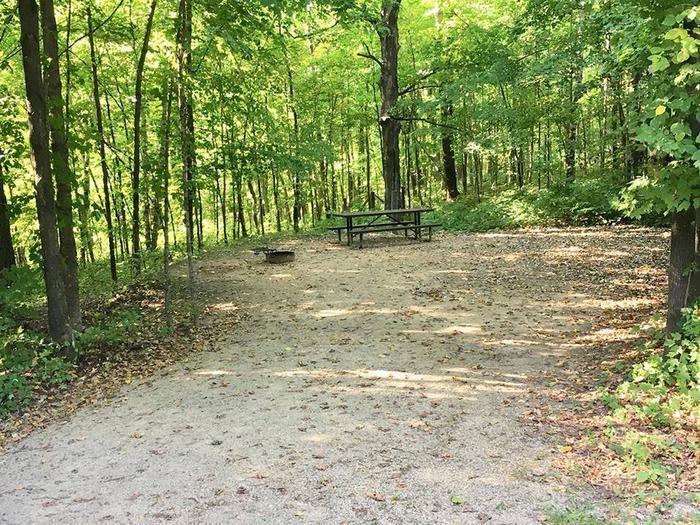 Site 1 ground image