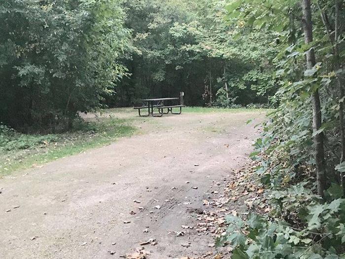 Site 2 ground image