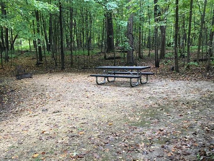 Site 25 ground image