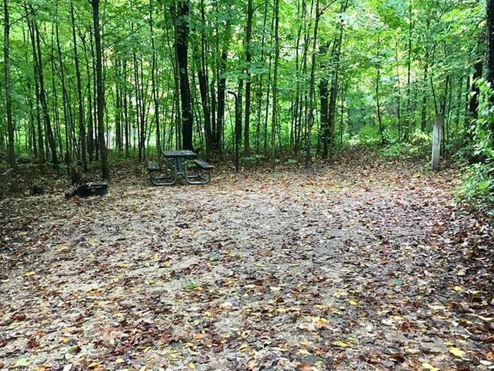 Site 29 ground image