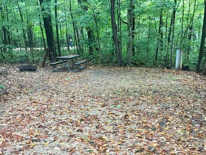 Site 38 ground image