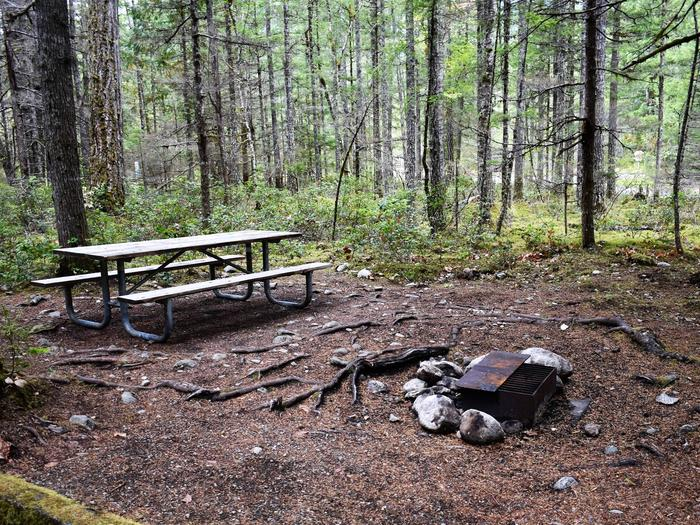 Picnic table and fire ring surrounded by treesView of campsite