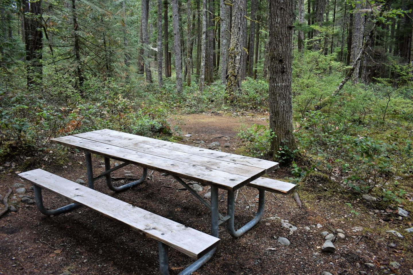Picnic table and tent areaView of tent area