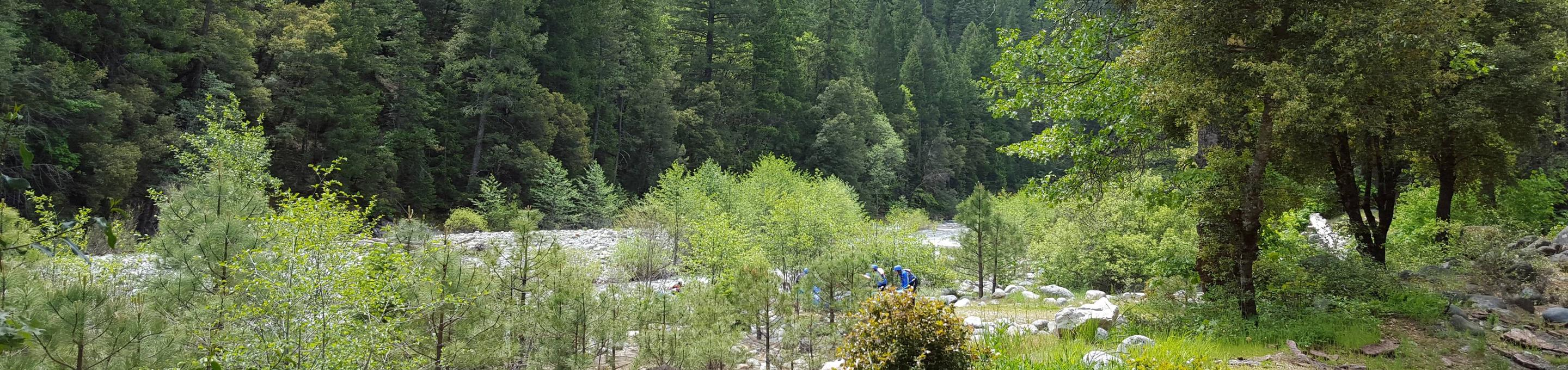 Whitewater Rafting, North Fork Yuba RiverNorth Fork Yuba River near Indian Valley