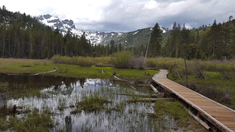 Sierra ButtesSand Pond Trail