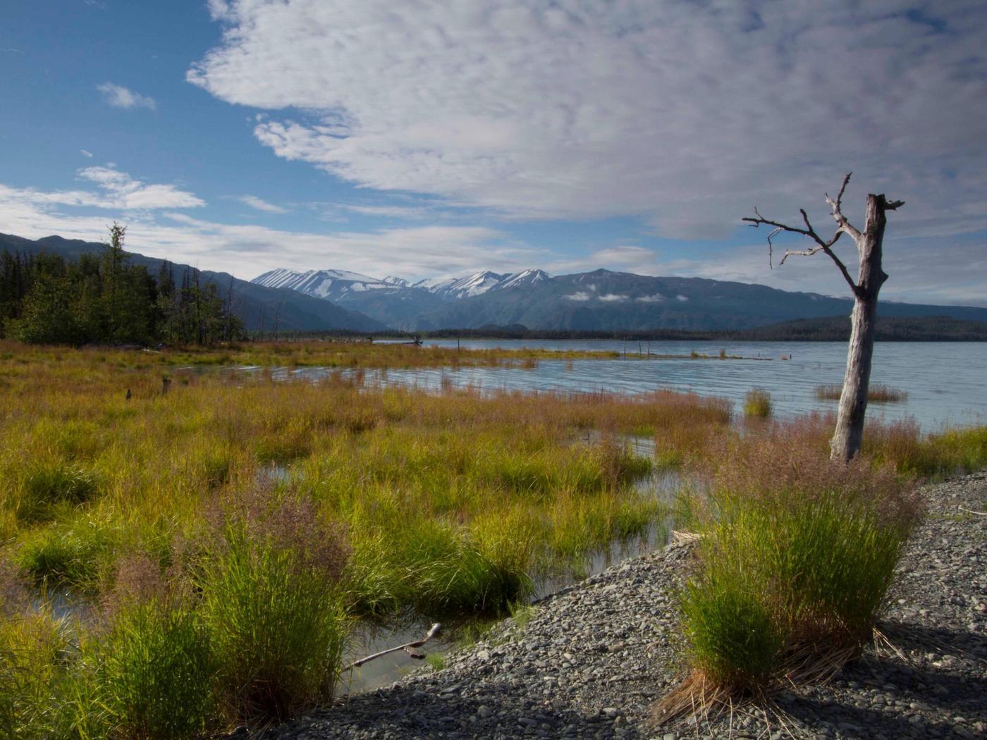 Kenai Wilderness, Managed by the US Fish and Wildlife Service's Kenai National Wildlife Refuge