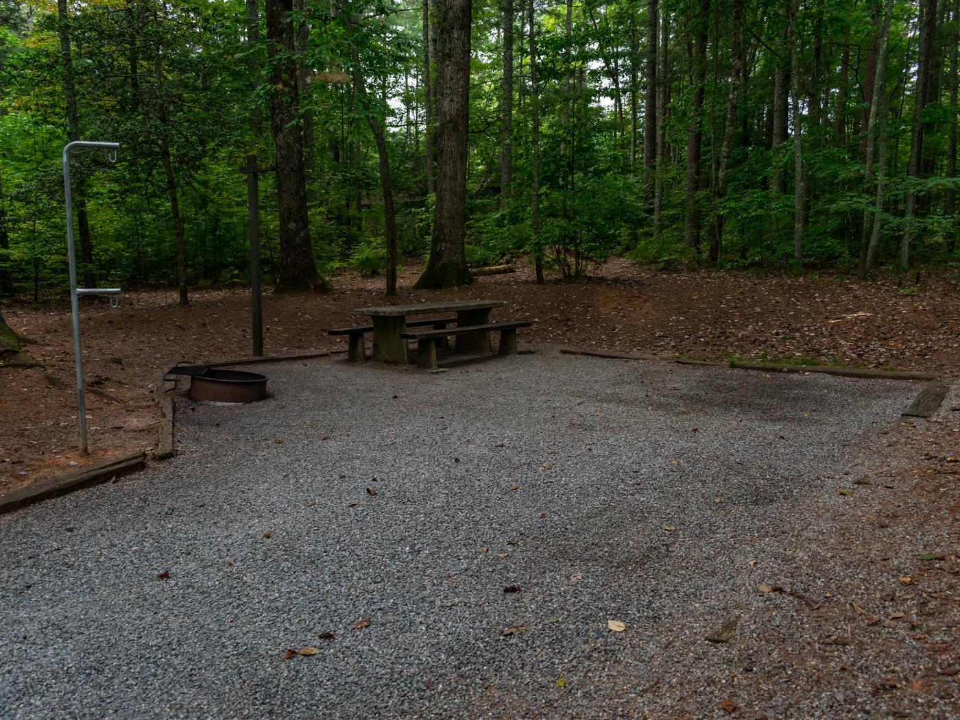 Lake Powhatan #7 CampsiteLake Powhatan Big John Loop #7