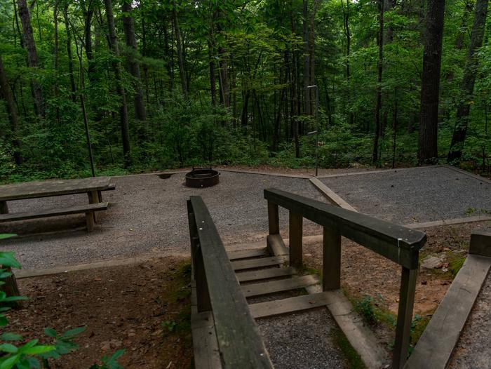 Lake Powhatan #8 CampsiteLake Powhatan Big John Loop #8