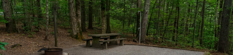 Lake Powhatan #10 CampsiteLake Powhatan Big John Loop #10