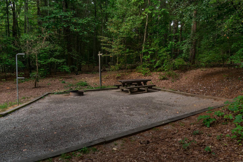 Lake Powhatan #11 CampsiteLake Powhatan Big John Loop #11