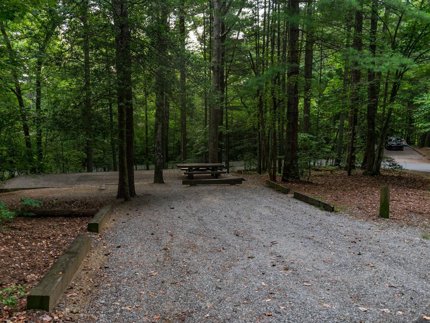Lake Powhatan #16 CampsiteLake Powhatan Big John Loop #16