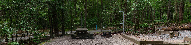 Lake Powhatan #18 CampsiteLake Powhatan Big John Loop #18