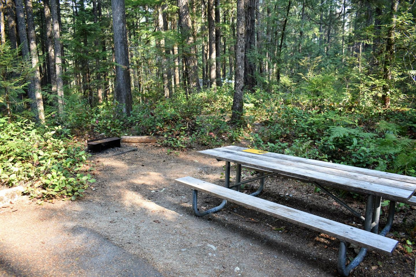 Fire ring and picnic tableView of campsite