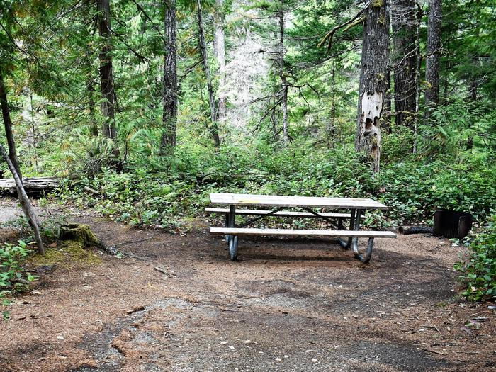 Picnic table, and fire ringView of campsite