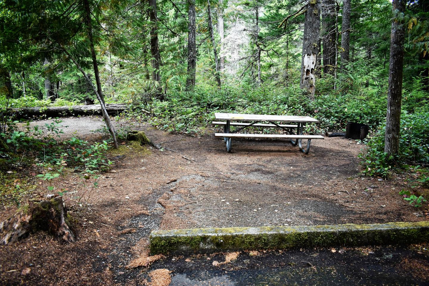 Tent area, picnic table, and fire ringView of campsite