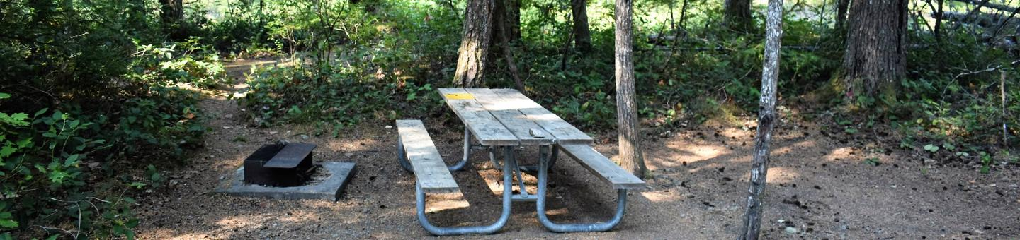 Fire ring, picnic table, and tent areaView of campsite