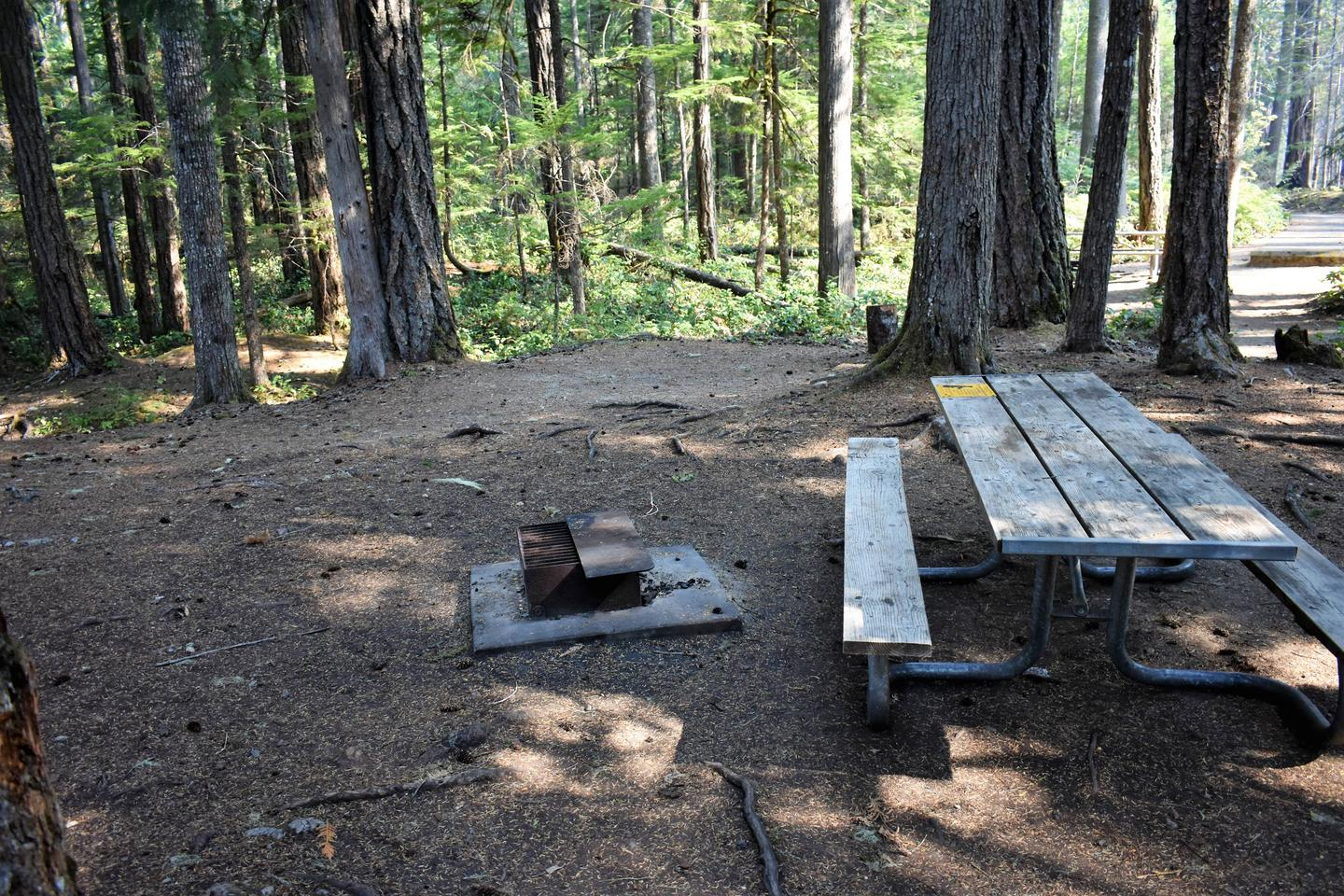 Tent area, fire ring,  and picnic tableView of campsite