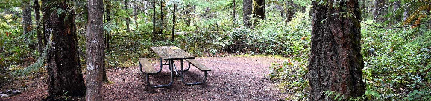 Picnic table and tent areaView of campsite