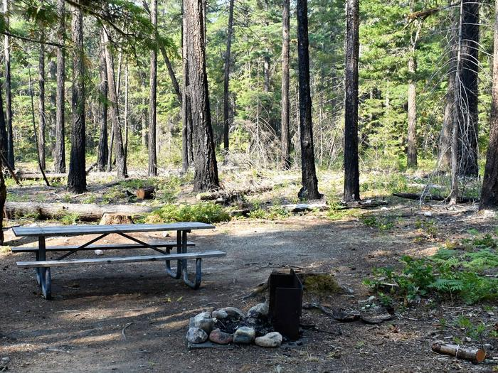 Picnic table, tent area, and fire ringView of campsite