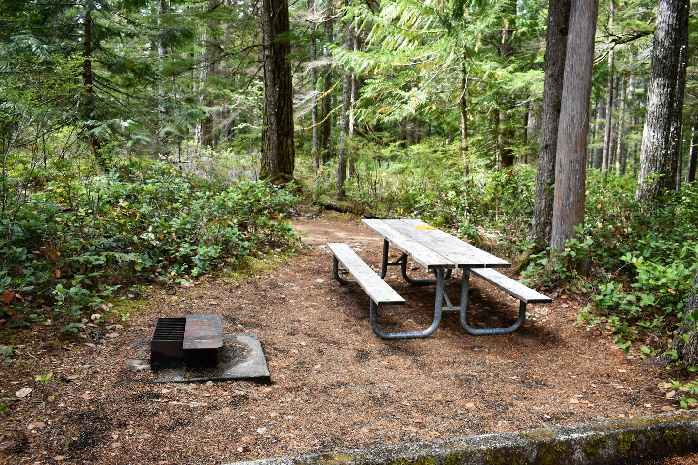 Fire ring, tent area, and picnic tableView of campsite