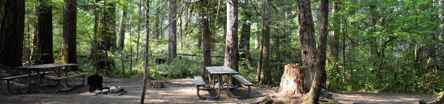 Two picnic tables and fire ringView of campsite