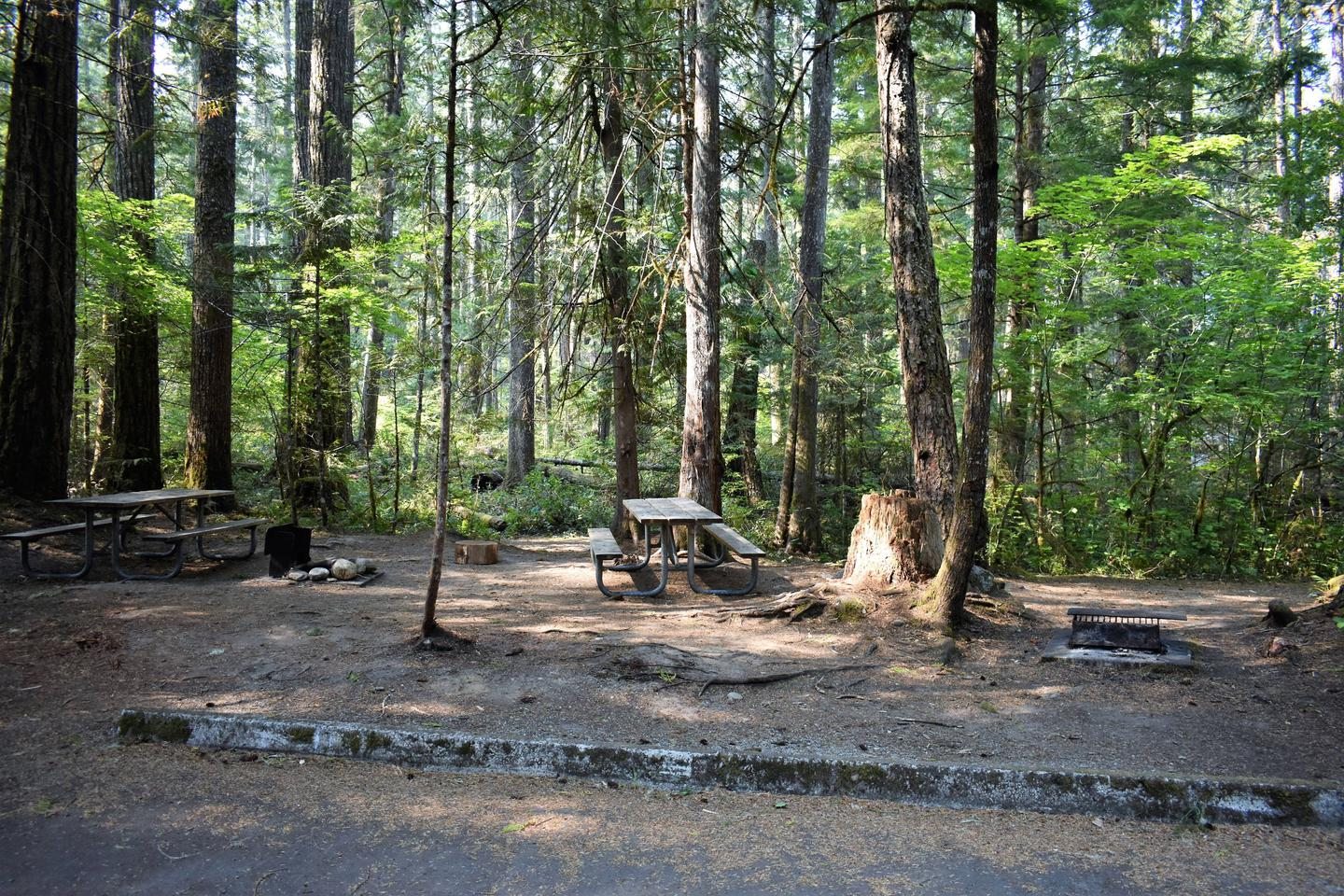 Two picnic tables and two fire ringsView of campsite