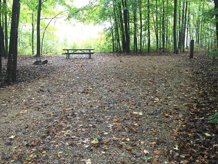 Site 13 ground image