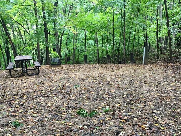 Site 16 ground image
