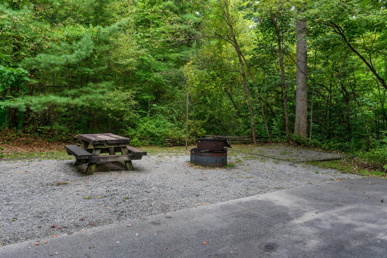 Lake Powhatan #36A CampsiteLake Powhatan Lakeside #36A