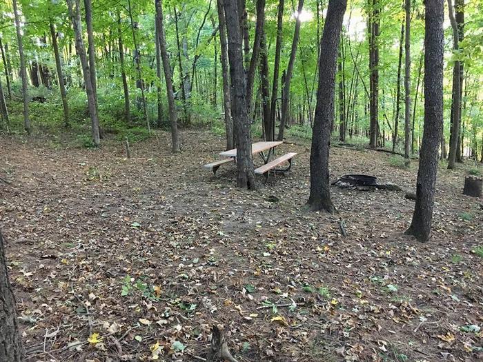 Tent site C