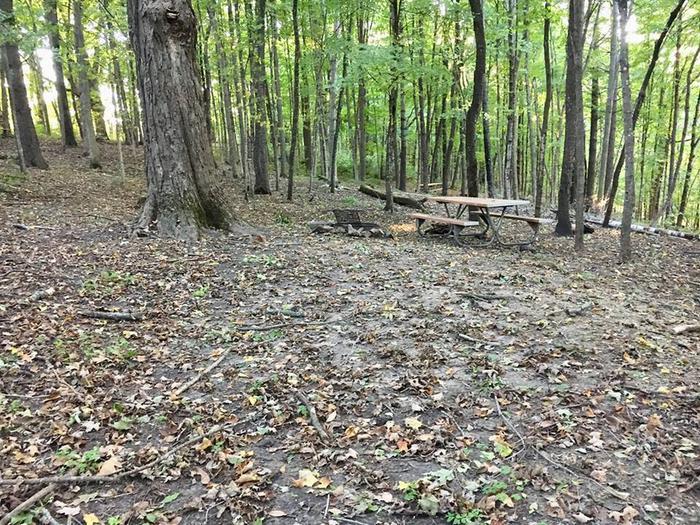 Tent site A (entire photo)