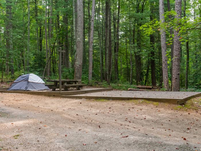Lake Powhatan #22 CampsiteLake Powhatan Bent Creek #22