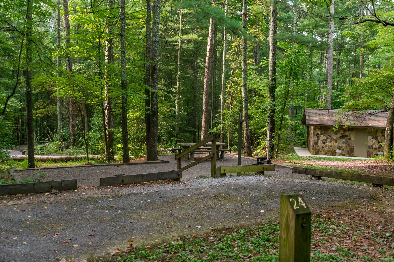 Lake Powhatan #24 CampsiteLake Powhatan Bent Creek #24