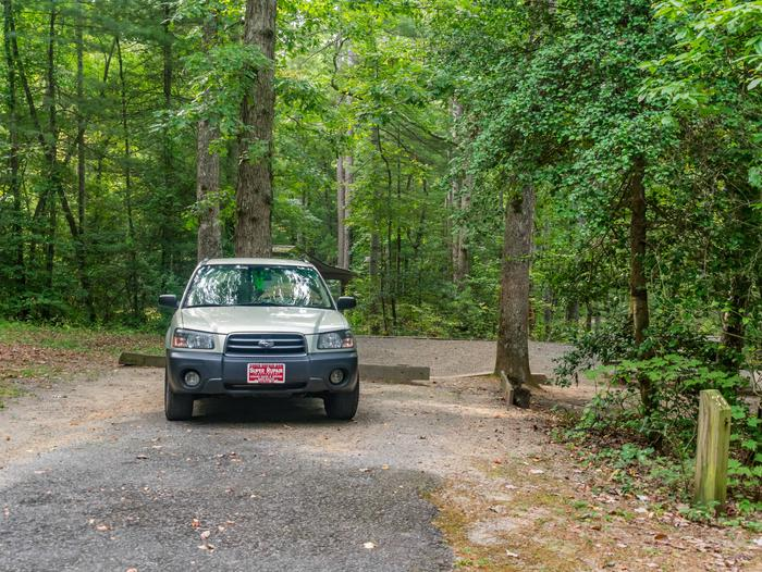 Lake Powhatan #33 CampsiteLake Powhatan Bent Creek #33